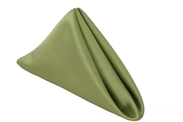 Where to find Light Green Matte Satin Dinner Napin in Tulsa