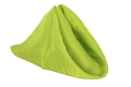 Rental store for Lime Iridescent Crush Dinner Napkin in Tulsa OK
