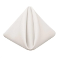 Rental store for White Cotton Dinner Napkins, 20x20 in Tulsa OK