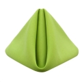 Rental store for Lime Green Classic Dinner Napkins in Tulsa OK