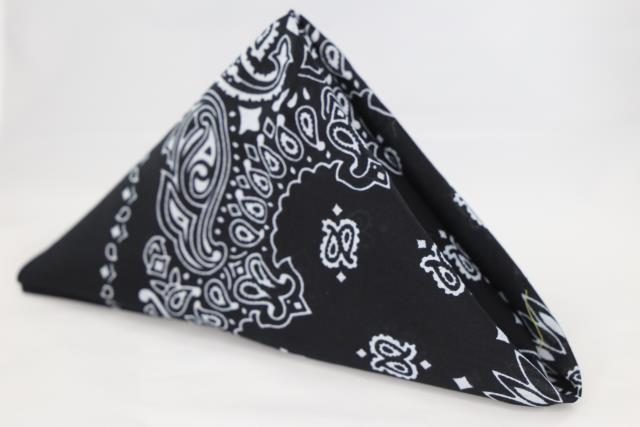 Where to find Navy Blue Bandana Napkins in Tulsa
