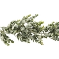 Rental store for 6ft Eucalyptus Garland in Tulsa OK