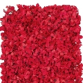 Rental store for Red Hydrangea flower wall backdrop panel in Tulsa OK