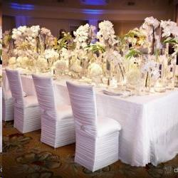 Rent Chair Covers, Sashes & Accessories